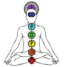7 major chakras color illustratio person seated in lotus posen