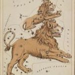 astrological_sign_leo_public-domain_300dpi