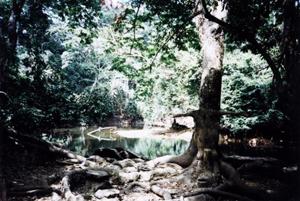 Oshun River, named after Oshun African goddess