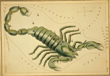 astrological_sign_scorpio_public-domain-no-known-restrictions_72dpi