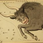 astrological_sign_taurus_public-domain-no-known-restrictions_72dpi