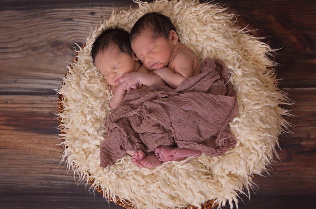 gemini-twins-astrology-public-domain-pixababy