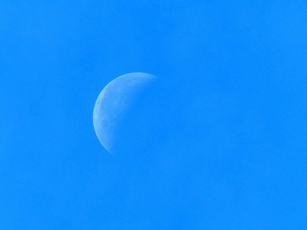moon-half-quarter-moon-pizabay-public-domain